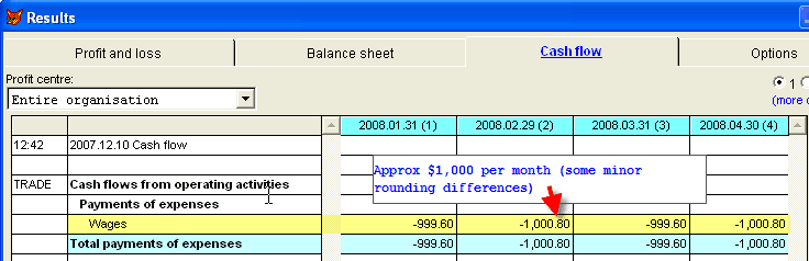 Budget cash flow for salary/wages